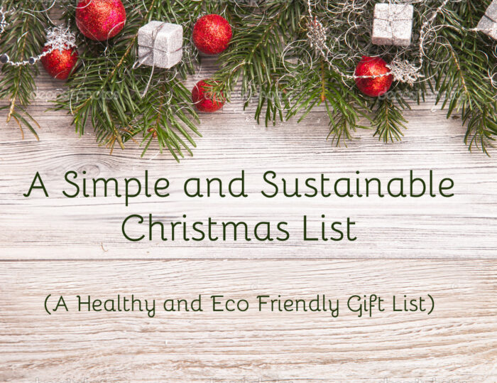 A Simple and Sustainable Christmas List